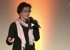 vídeos seminário